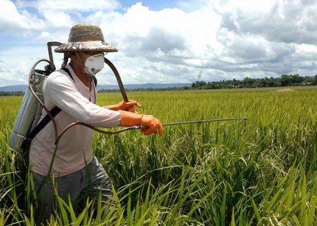 توصیه های سمپاشی مزارع کشاورزی