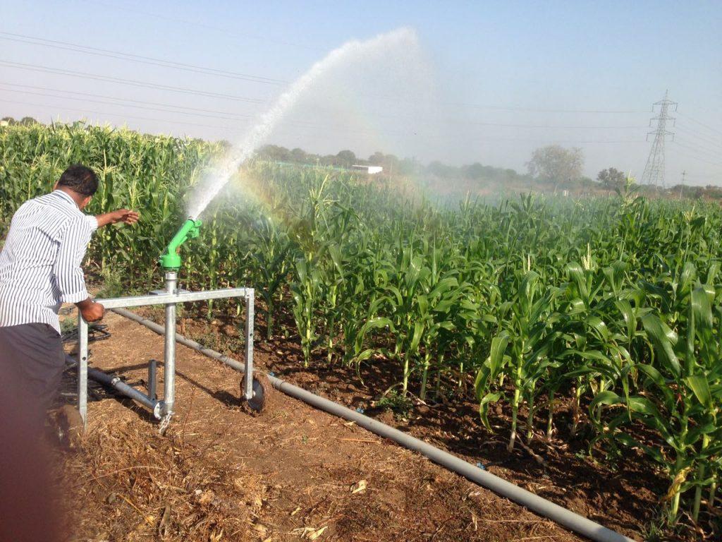 همه چیز در مورد آبیاری بارانی