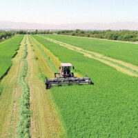 روش و تکنیک عمومی افزایش سود در کشاورزی و دامپروری