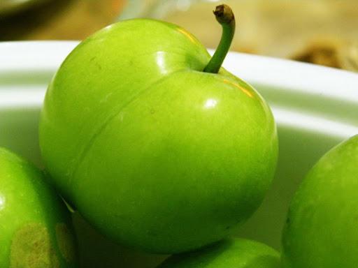 گوجه سبز ، نگهداری و کاشت آن